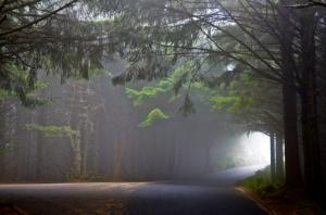 Cape San Sebastian, Oregon by goingslo